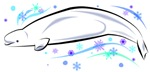 Winter Beluga