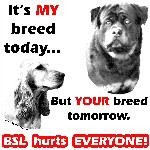 My Breed Today...YOURS Tomorrow