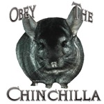 Chinchilla Obey