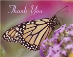 Wildlife Thank You  Cards