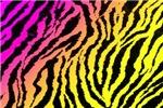 Vibrant Zebra Gradient