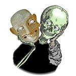 Mask/skull illusion