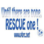 Until there are none, RESCUE one !