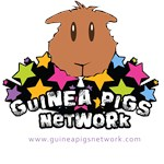 Guinea Pigs Network