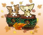 Fall Potted Chihuahuas