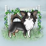 Garden Fence Chihuahua- Long Tri Standing