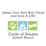 Castle of Dreams Logo