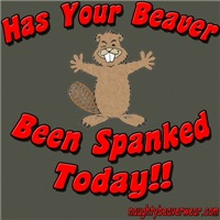 Has Your Beaver Been Spanked