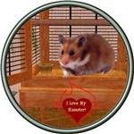 Hamster #2