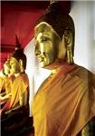 Gold Budhas Meditating
