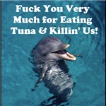 What Dolphins Really Sqeak!