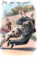 You Got My Goat