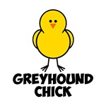 Greyhound Chick