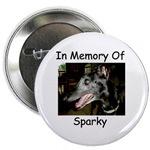In Memory Of.....