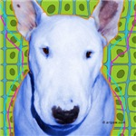 Buck The Bull Terrier