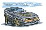The Bandit 78 Trans Am