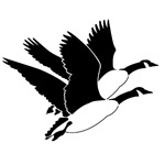 Flying Geese T-shirts and Gifts