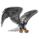 Proud Eagle T-shirts and Gifts