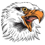 Eagle Head T-shirts and Gifts