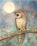 Brown Spotted Owl Wildlife Art