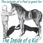 The out side of a foal