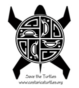 Sea Turtle Inspired by Ancient  Native Cultures