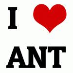 I Love ANT