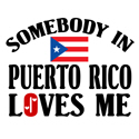Somebody In Puerto Rico T-shirt