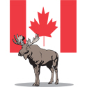 Moose With Canada Flag