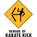 Beware Of Karate Kick