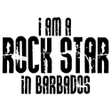 Rock Star In Barbados