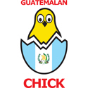 Guatemalan Chick