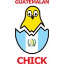 Guatemalan Chick