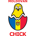 Moldovan Chick