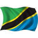 Wavy Tanzania Flag