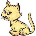 Naughty Kitten T-shirt & Gift