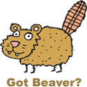 Got Beaver