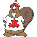 Canada Beaver