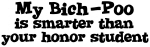 Honor Student: My <strong>Bich-Poo</strong>