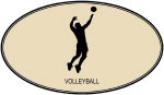 Mens Volleyball (euro-brown)