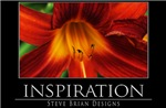 INSPIRATION9