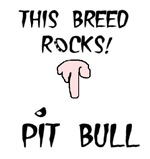 THIS BREED ROCKS ( AMERICAN PIT BULL)
