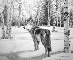 Timber Wolf by Marc Brinkerhoff