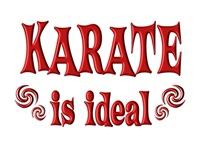 <b>KARATE IS IDEAL</b>
