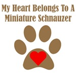 My Heart Belongs To A Miniature Schnauzer
