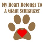 My Heart Belongs To A Giant Schnauzer