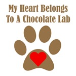 My Heart Belongs To A Chocolate Lab