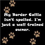 Well Trained Border Collie Owner