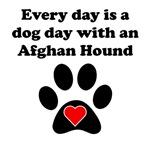 Afghan Hound Dog Day