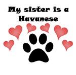 My Sister Is A Havanese